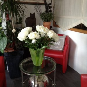 Le Gaudence Hotel Restaurant Allaire